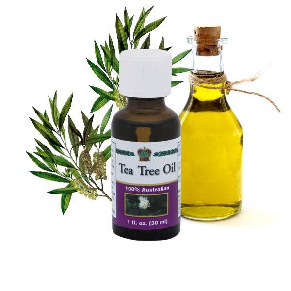 Масло чайного дерева для лица можно использовать не только как лекарственное средство, предназначенное для устранения очагов воспаления, угревой сыпи и различных дерматологических заболеваний, но и в качестве профилактики.